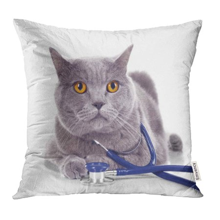 White Shorthair Cat - YWOTA Adorable Short Hair Grey Cat with Stethoscope White Animal Beautiful British Care Pillow Cases Cushion Cover 20x20 inch