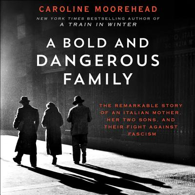 A Bold and Dangerous Family - Audiobook