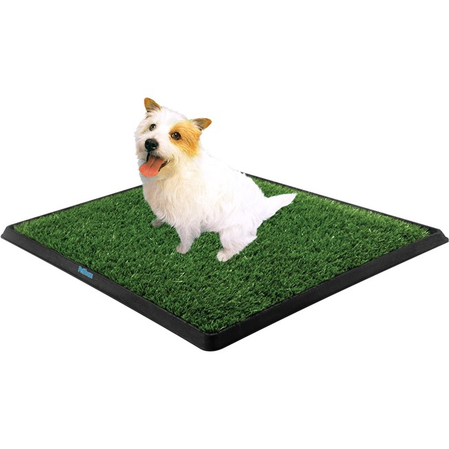As Seen On Tv ***fasttrack***as Seen On Tv Pet Zoom Pe