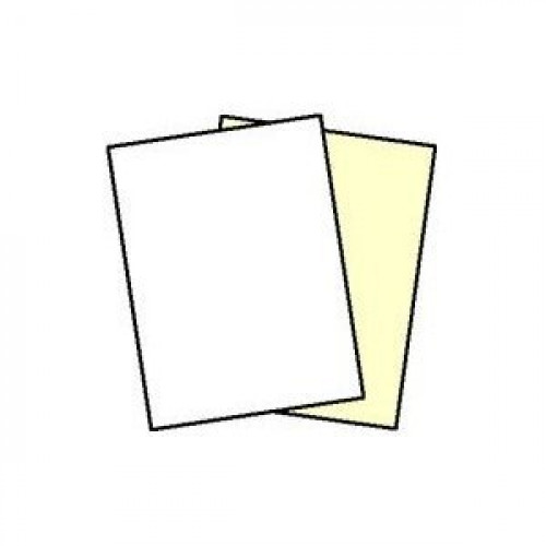 250 Sets, NCR Paper, 5887, Collated 2 Part (White, Canary), Letter Size Carbonless Paper Appleton by Appleton