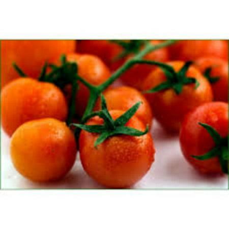 - Tomato Large Cherry Basket Pack Garden Heirloom Vegetable 500 Seeds