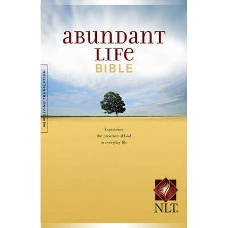 Living an abundant life scripture