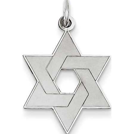 Leslies Fine Jewelry Designer 14K White Gold Laser Designed Star of David (17x26mm) Pendant Gift ()