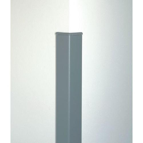 Click here to buy PAWLING CORP CG-20M-8-210 Corner Guard, 2 x 96 In, Silver Gray by Pawling.
