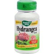 Nature's Way Hydrangea Root - 415 mg - 100 Capsules