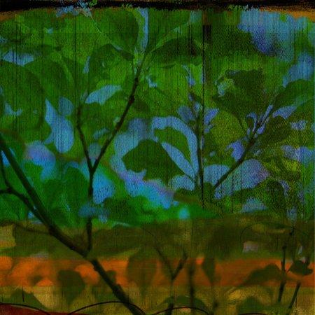Abstract Leaf Study V Print Wall Art By Sisa Jasper