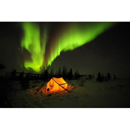 Aurora Borealis Or Northern Lights Shines Across The Dark Sky Above An Illuminated Yellow Tent In The Snow With Snowshoes Leaning Across The Entrance Wapusk NP Hudson Bay Manitoba Canada Winter Poster