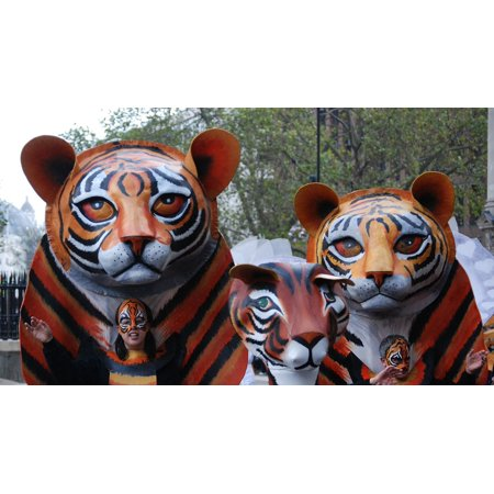 LAMINATED POSTER Mask Carnival Cat Face Tiger Face Parade Costume Poster Print 11 x 17 - Painted Tiger Face For Halloween