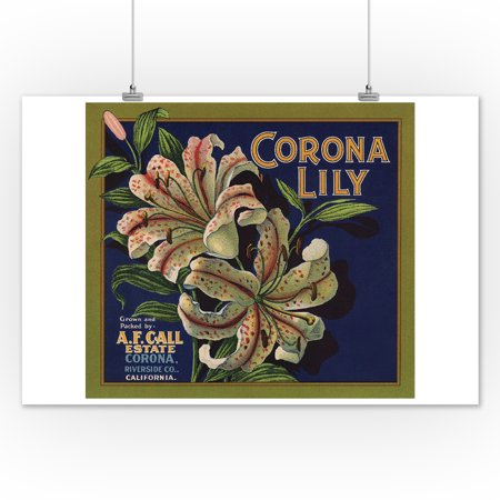 Corona Lily Brand - Corona, California - Citrus Crate ...