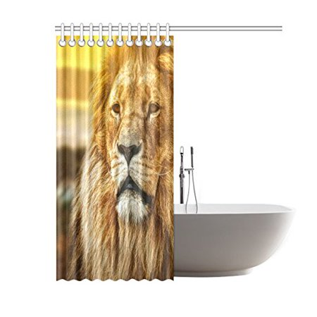 GCKG African Animal Lion Shower Curtain, Sunset Landscape Polyester Fabric Shower Curtain Bathroom Sets with Hooks 60x72 Inches - image 2 de 3