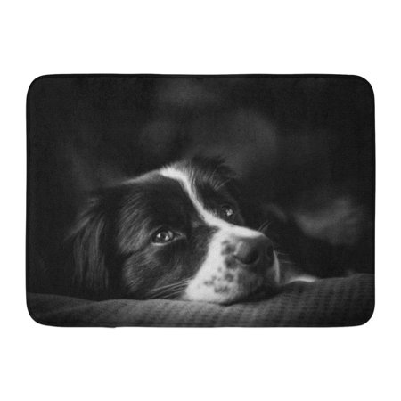 Border Collie Black And White - GODPOK Animal Mix Emotion Down Black and White Border Collie Adult Attentive Rug Doormat Bath Mat 23.6x15.7 inch