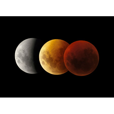 Composite Image Of Lunar Eclipse Victoria Australia Canvas Art   Philip Hartstocktrek Images  17 X 12