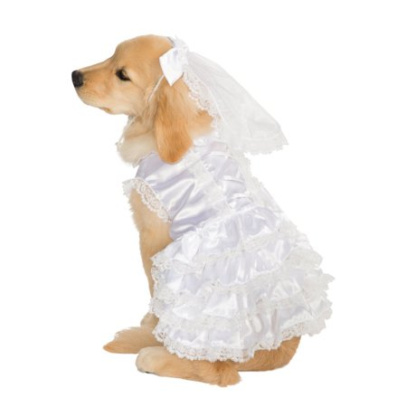 Bride Pet Costume for $<!---->