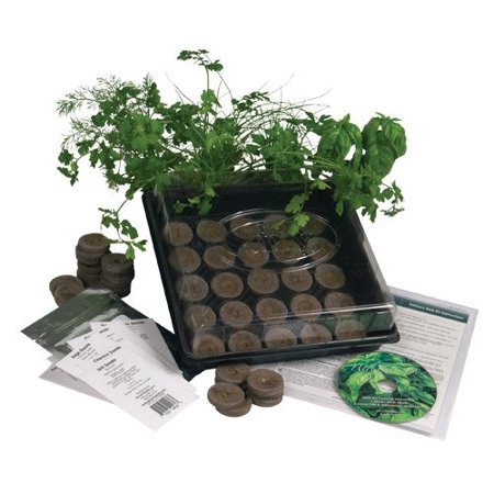 K5-1 Indoor Culinary Herb Garden Starter Kit, Grow Fresh Cooking Herbs & Spices, Assortment of 12 Culinary Herb Seeds Parsley, Thyme, Cilantro,.., By Living Whole (Garden Fresh Herbs)