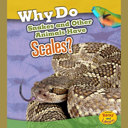 Why Do Snakes and Other Animals Have Scales? - Audiobook Scale Tech Snake