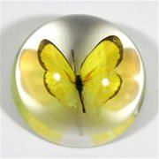 Ed Speldy East SS380 Grass Yellow Butterfly Dome