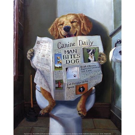 Dog Gone Funny - Dog Reading Newspaper by Lucia Heffernan 10x8 Yellow Lab Art Print Poster Humor