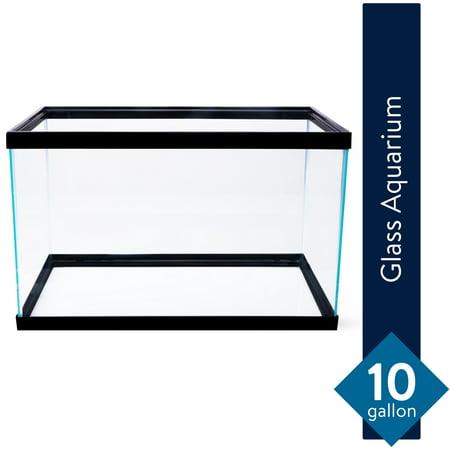 Aqua Culture 10-Gallon Glass Aquarium Tiny Aquarium Fish