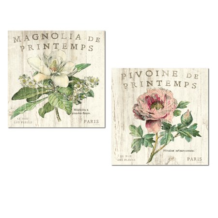Lovely Vintage Distresesd Paris Magnolia and Peony Flower Set by Sue Schlabach; Floral Decor; Two 12x12in Unframed Paper Posters ()