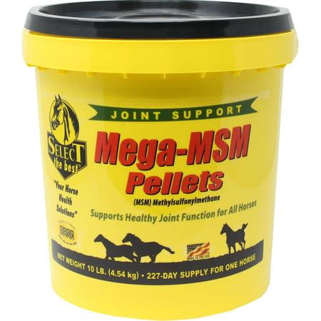 Richdel, Inc 22700024 Select The Best Mega-Msm Pellets