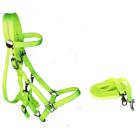 ENGLISH WESTERN HORSE NYLON BRIDLE HALTER BRIDLE COMBO PULL REINS LIME