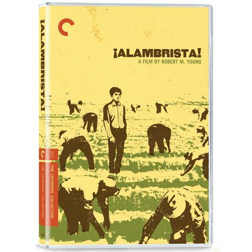 Alambrista! (Criterion Collection) (Blu-ray) (Widescreen)