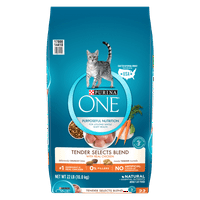 Purina ONE Tender Selects Blend With Real Chicken Adult Dry Cat Food - 22 lb. Bag