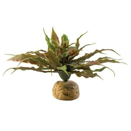 Exo-Terra Plant, Star Cactus