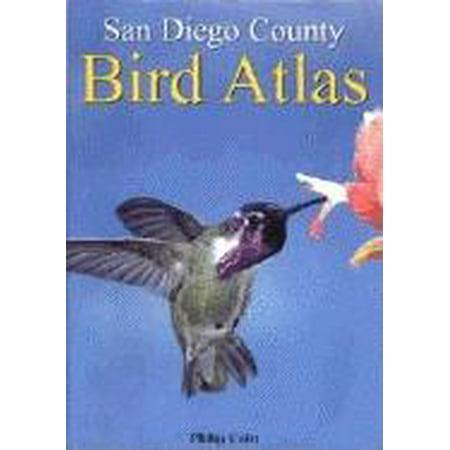 San Diego County Bird Atlas - Spirit Halloween San Diego