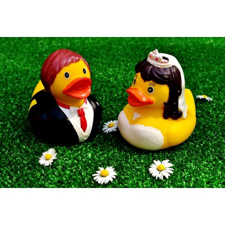 Canvas Print Funny Bride and Groom Rubber Ducks Marry Wedding Stretched Canvas 10 x 14