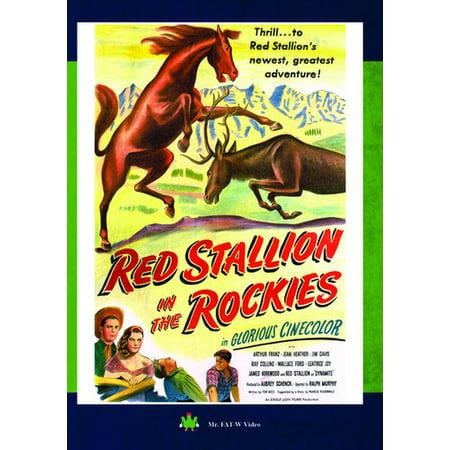 Rocky Italian Stallion Robe (Red Stallion in the Rockies)