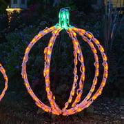 20 in. LED 3D Pumpkin Lighted Display - 114 Bulbs