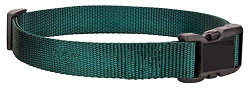 PETSAFE Medium Electric Fence Nylon Replacement Dog Collar 2 Hole 1.25 Apart