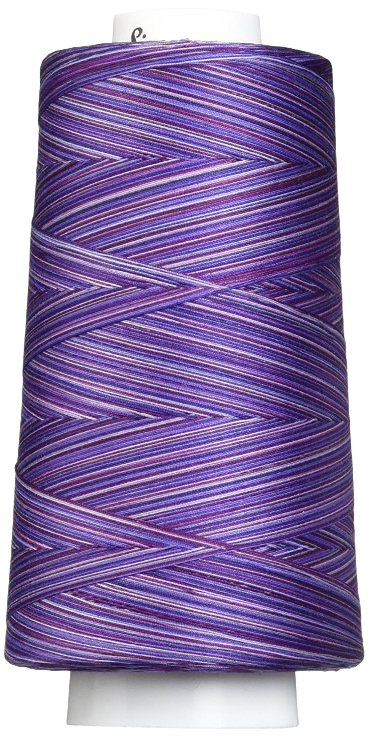 Variegated Spring Grass Signature Cotton Quilting Thread 3000 yd