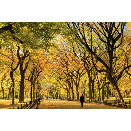 Usa, New York City, Manhattan, Central Park, the Mall Print Wall Art By Michele (Woodbury Mall New York)