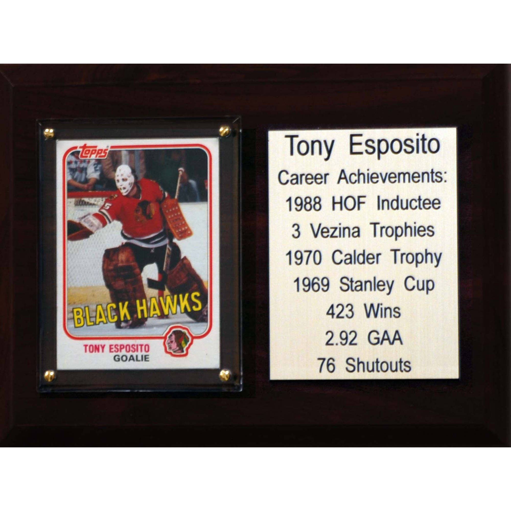 C&I Collectables NHL 6x8 Tony Esposito Chicago Blackhawks Career Stat Plaque
