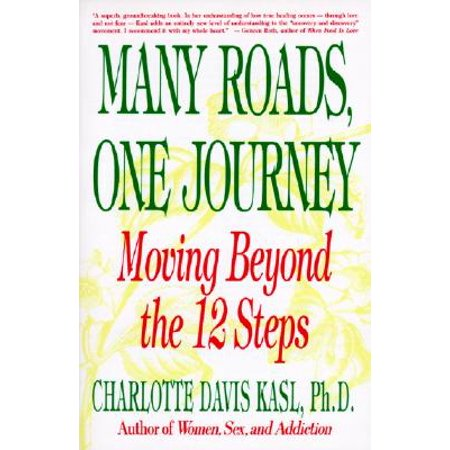 Many Roads One Journey : Moving Beyond the Twelve (Beyond The Textbook The Journey Of Christopher Columbus)