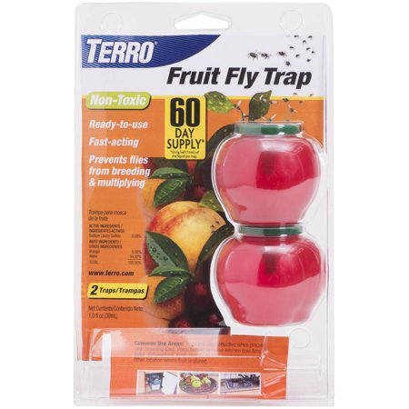 Venus Fly Trap Terrarium - Terro T2502 Fruit Fly Trap, 2-Pack