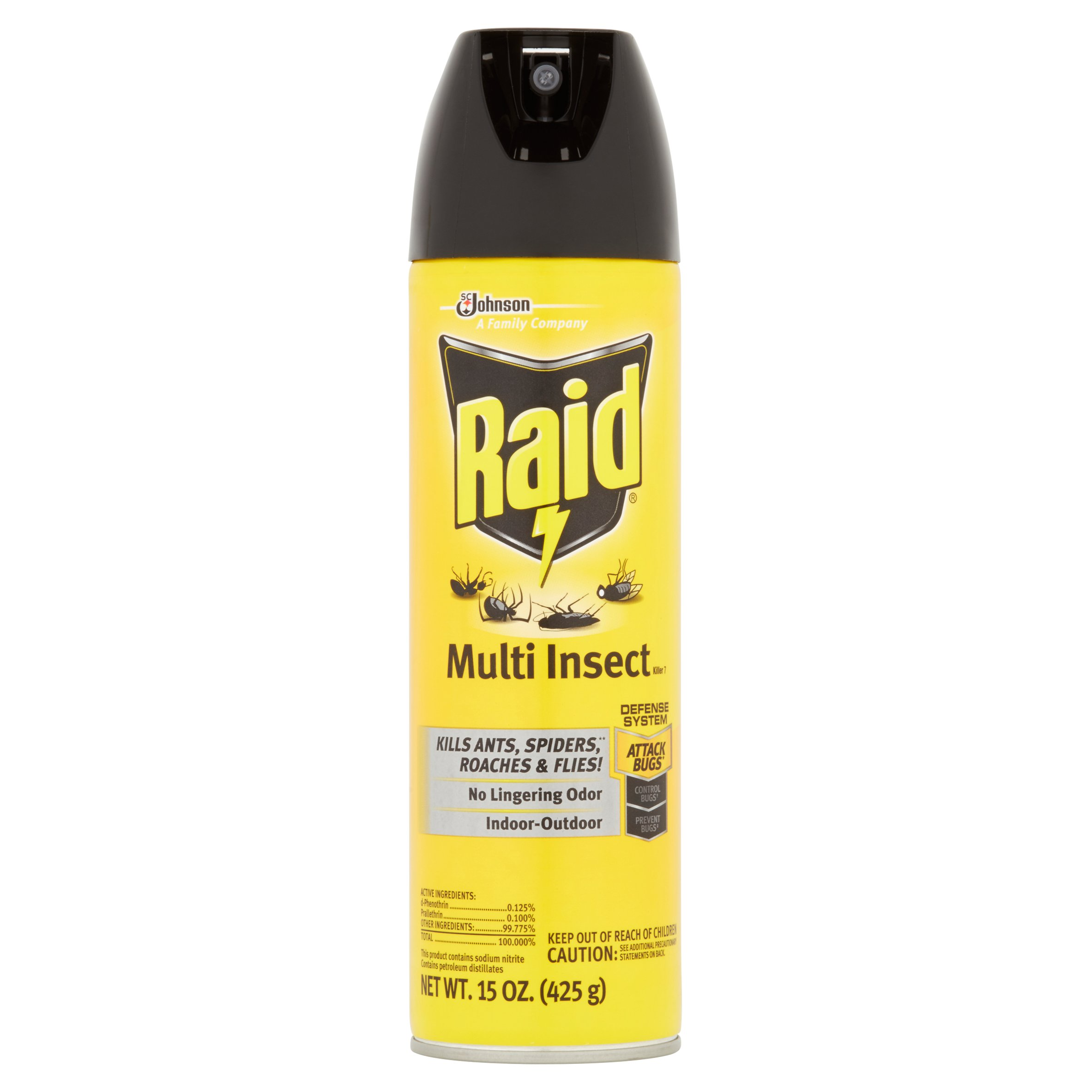 Raid Multi Insect Killer 7 15oz