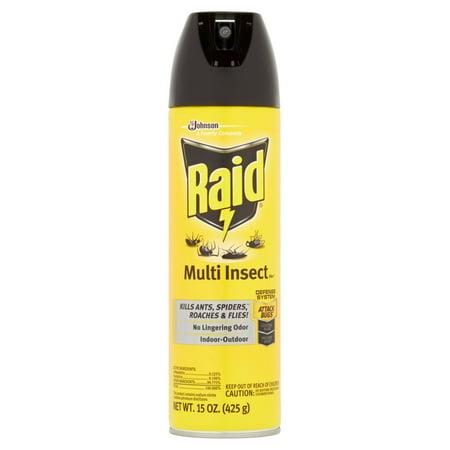 Raid Bed Bug Spray Work