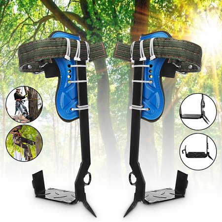 Tree Climbing Spikes Climb Spurs (Set of 2) Adjustable Pad Safety Belt For Survival Hunting Fruit (Best Climbing Tree Stand 2019)