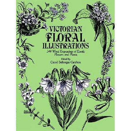 Victorian Floral Illustrations : 344 Wood Engravings of Exotic Flowers and Plants (Victorian Illustration)