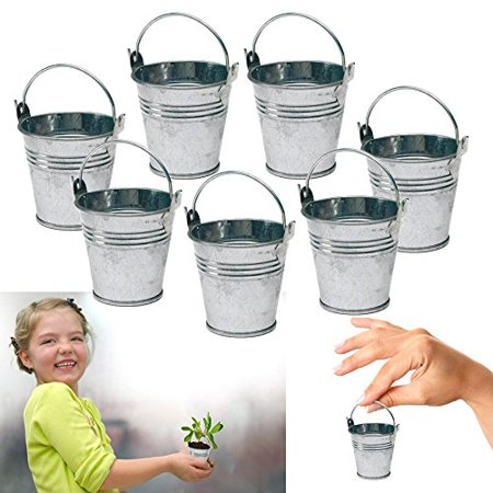 Dazzling Toys 24 Mini Metal Buckets Tin Party Pail Containers Wedding Souvenir (Party Buckets)