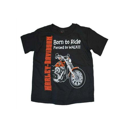 Buy Harley Sportster (Harley-Davidson Little Boys' Born to Ride, Forced to Walk Tee Black 0174132, Harley Davidson )