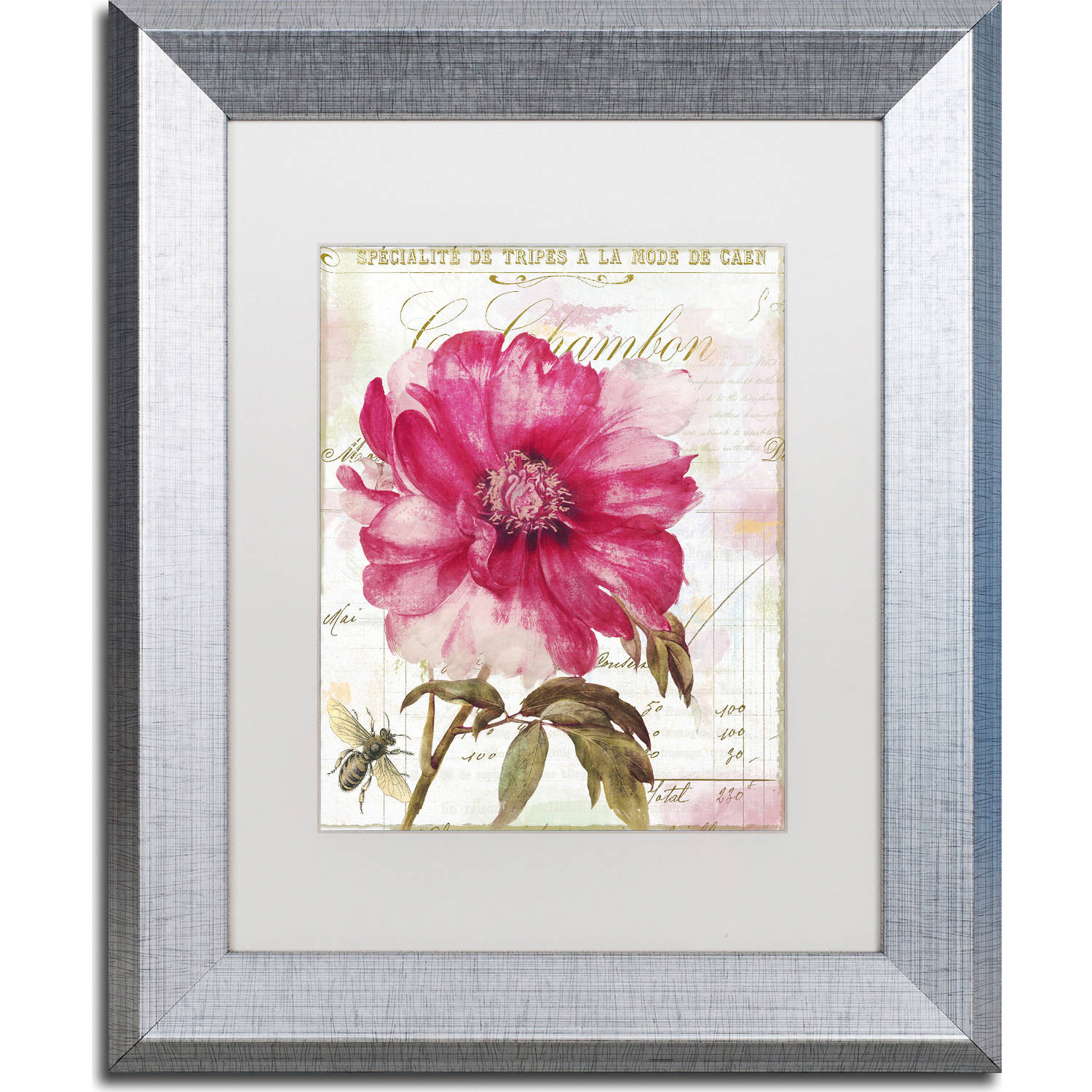 "Trademark Fine Art ""Pink Peony"" Canvas Art by Color Bakery, White Matte, Silver... by Trademark Global LLC"