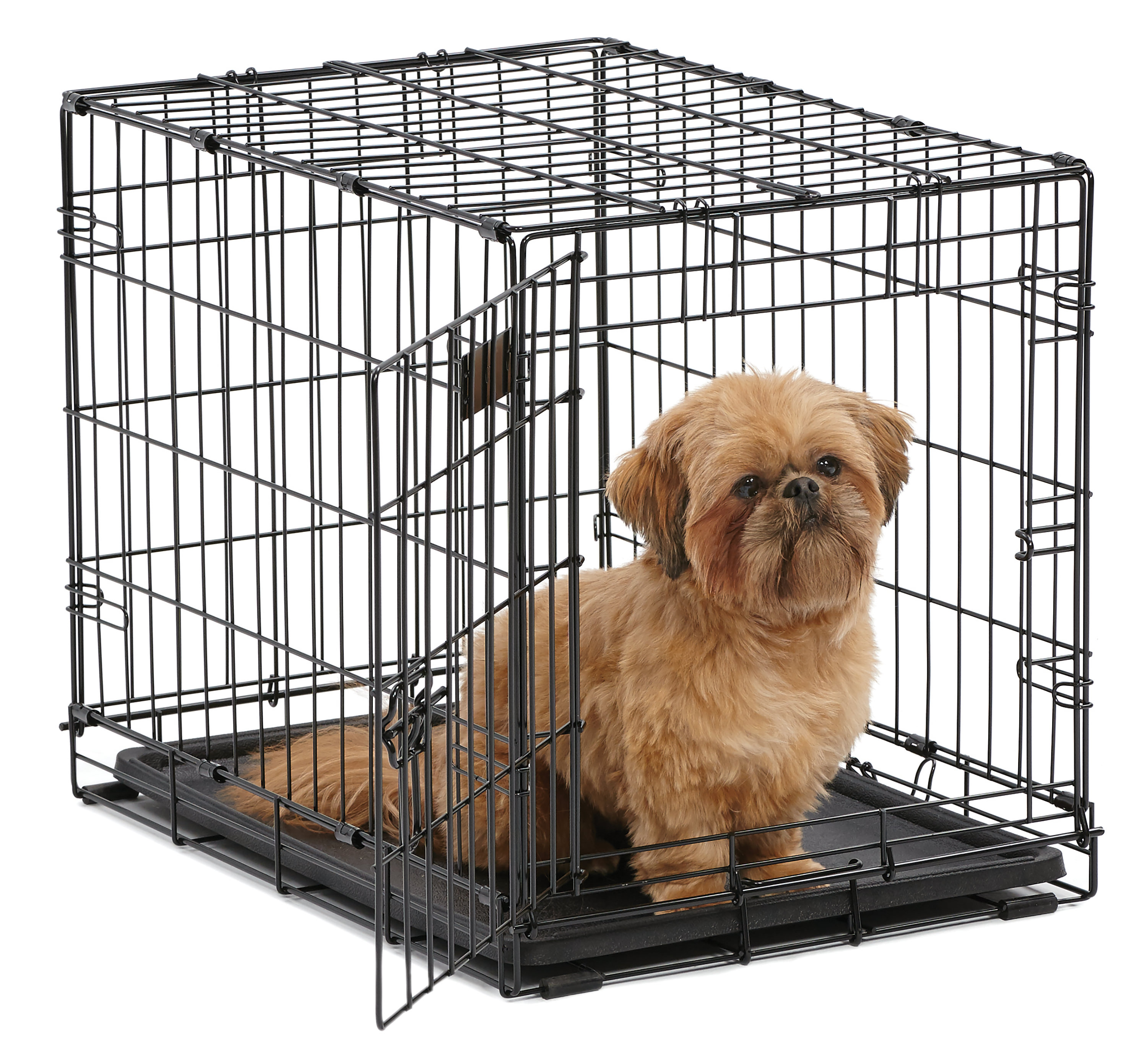 Single Door iCrate Metal Dog Crate, 24-Inch, Black