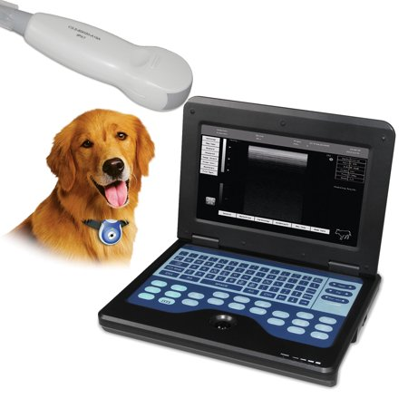 Laptop Veterinary Ultrasound Machine B-Ultrasound with Micro Convex cardiac probe
