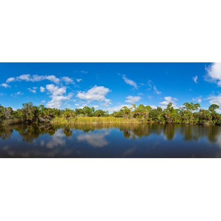 Small pond in Alligator Creek Preserve in Punta Gorda Charlotte County Florida USA Poster Print by Panoramic (Creek Pond)
