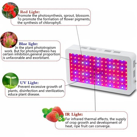 Ktaxon 1200w Double Chips Full Specturm Led Grow Light For Greenhouse And Indoor Plant Flowering
