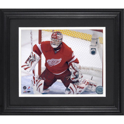 NHL - Dominik Hasek Detroit Red Wings Framed Unsigned 8x10 Photograph